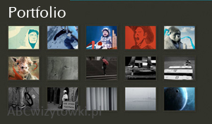 portfolio prac
